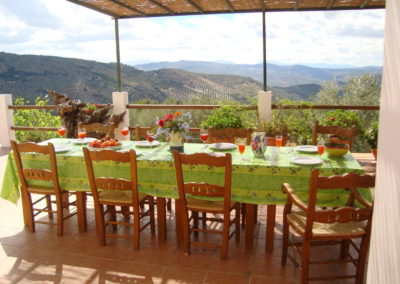 Terrace table with view